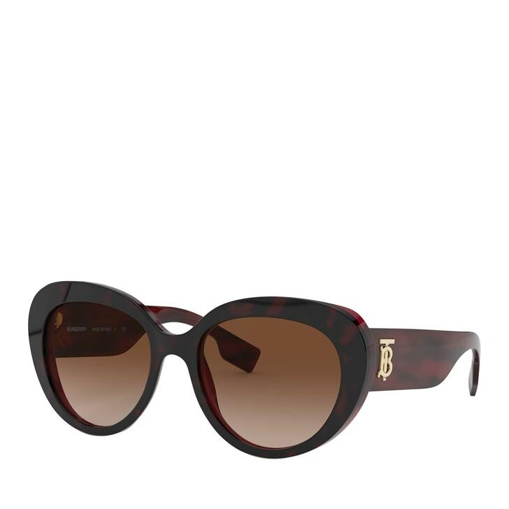 sunglasses, Burberry, AZETAT WOMEN SONNE TOP HAVANA ON BORDEAUX