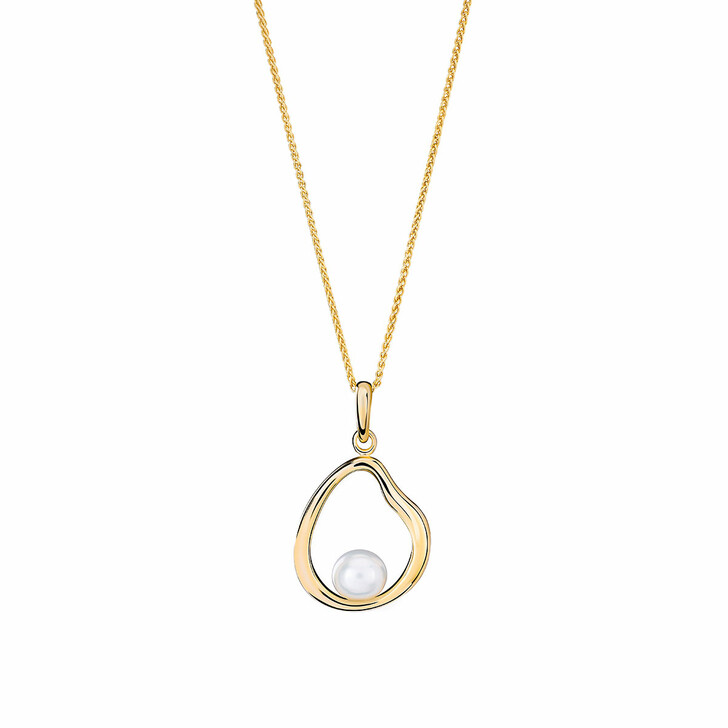 Kette, Orphelia, Sterling Silver Necklace Fresh Water Pearl Yellow Gold