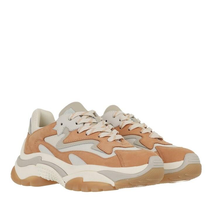 shoes, Ash, Addict                                             Nubuck Toast Eggnug Cream