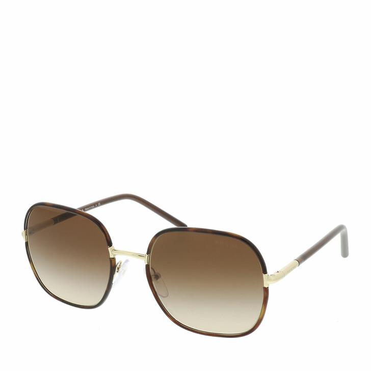 sunglasses, Prada, 0PR 67XS 2AU6S1 Woman Sunglasses Catwalk Havana